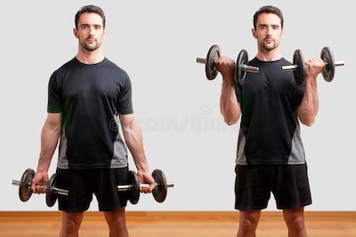 برنامه بدنسازی مقدماتی برای افزایش حجم سریع عضلات