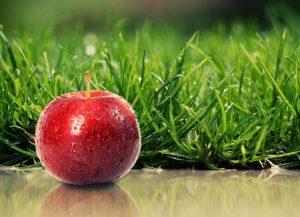 کالری و جدول ارزش غذایی سیب
