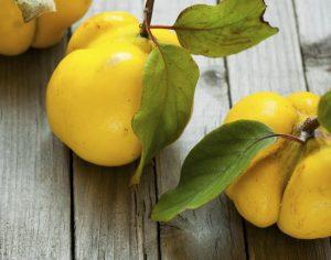 تمام خواص شگفت انگیز «میوه به» برای سلامتی و زیبایی