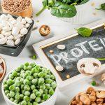 بیش ترین پروتئین را از این مواد غذایی دریافت کنید