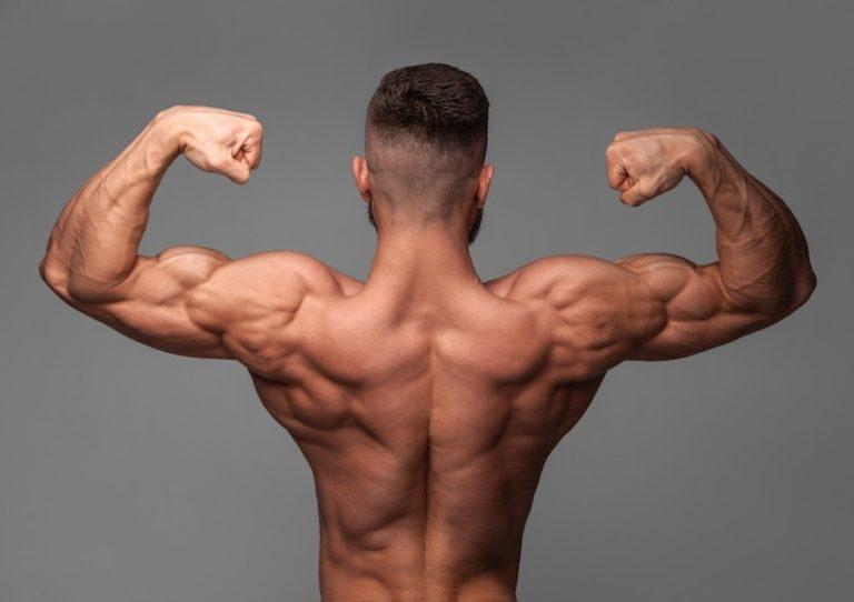 چقدر طول می کشد که عضلات ورزیده و قوی داشته باشیم؟