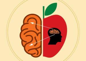 مواد غذایی حاوی ویتامین های مورد نیاز مغز برای تقویت قدرت ذهنی