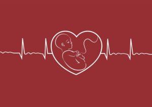 چه زمانی ضربان قلب جنین قابل شنیدن است؟
