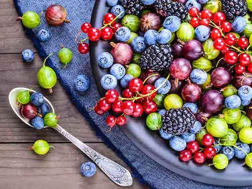 15 ماده غذایی مناسب و مهم برای رژیم کتو