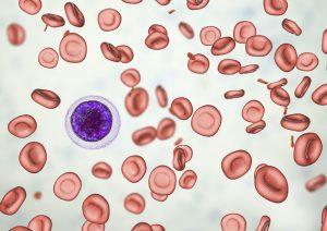 کم خونی و هر آنچه باید درباره آن بدانید