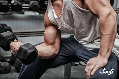 برنامه بدنسازی عضله سازی با دمبل ۴ روز در هفته