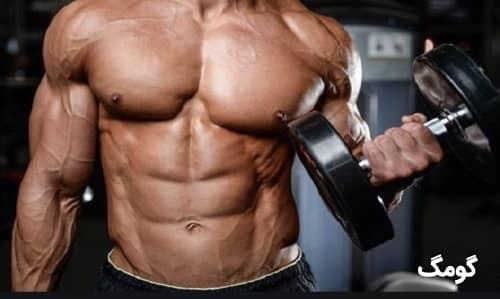 ۲۴ روش برای عضله سازی حجمی