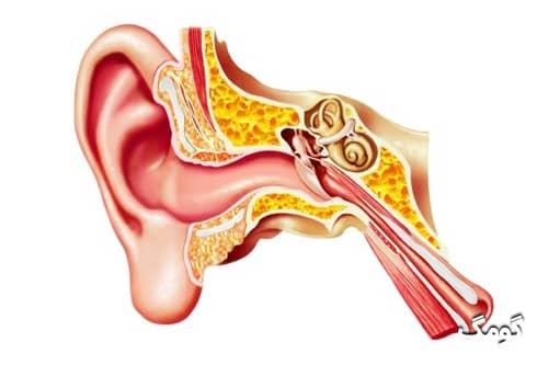 آماس گوش درونی یا لابیرنتیت؛ علائم، دلایل، تشخیص و درمان