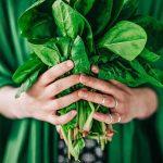 ۷ ماده غذایی مهم برای دوران بارداری