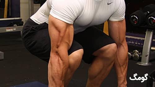 هایپرتروفی عضلانی و نقش ژنتیک در عضله سازی